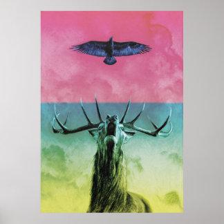 Mâle et Eagle en couleurs Posters