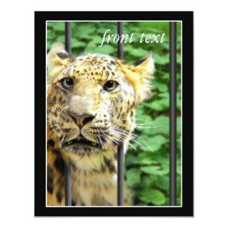 Malheur au zoo carton d'invitation 10,79 cm x 13,97 cm