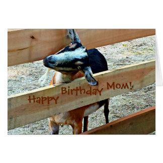 Maman de joyeux anniversaire d'enfant préféré carte de vœux