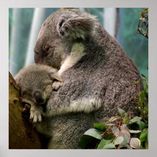 Maman de koala et nouveau bébé affiches