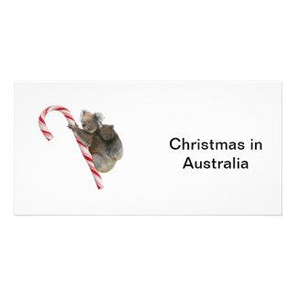 Maman et Noël de sucre de canne de koala de Joey Cartes De Vœux Avec Photo