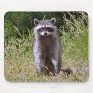 Maman Raccoon Tapis De Souris