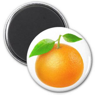 Mandarine Aimant