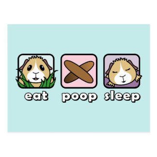 Mangez la carte postale de cobaye de sommeil de