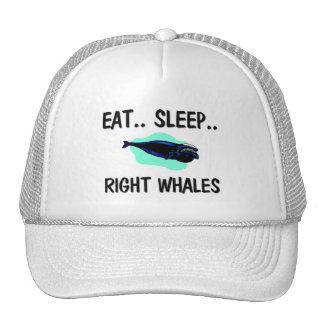 Mangez les BALEINES DROITES de sommeil Casquettes