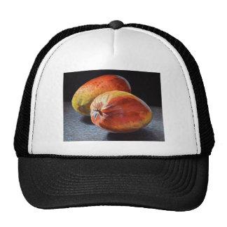 Mangues exotiques casquette de camionneur
