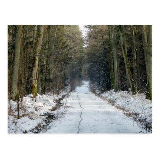 Manière de forêt en hiver carte postale