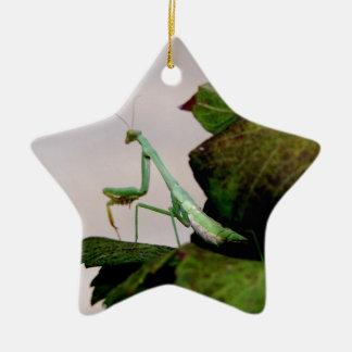 Mante sur un hortensia ornement étoile en céramique