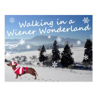 Marche au pays des merveilles de saucisse cartes postales