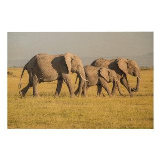 Marche de famille d'éléphant impression sur bois