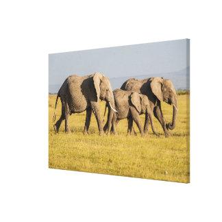 Marche de famille d'éléphant toile