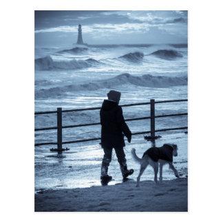Marcheur de chien chez Roker Carte Postale