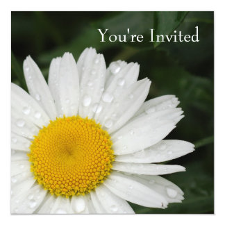 Marguerite toute l'invitation d'événement carton d'invitation  13,33 cm
