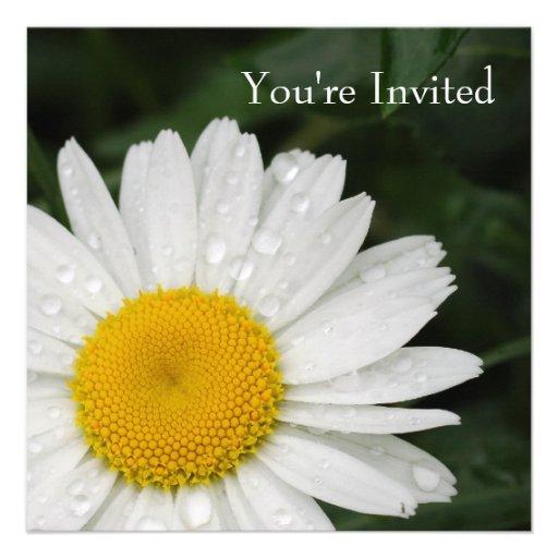 Marguerite toute l'invitation d'événement d'occasi