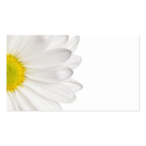 Marguerites customis  233 es par arri  232 re - plan de fleu cartes de visite    Visiting Card Background Design Full