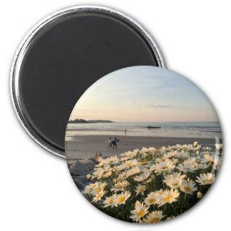 Marguerites et surfers sur la plage de Higgins Magnet Rond 8 Cm