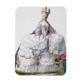 Marie Antoinette (1752-93) de 'DES Estam de Receui Magnet Rectangulaire