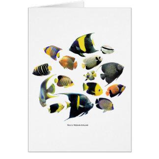 Marine angelfishの優良製品 グリーティングカード