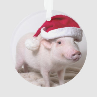 Marinez le mini ornement de Noël de porc