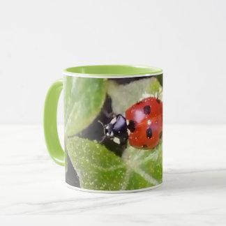 Maris-scarabée nez de dame tasse