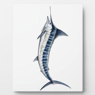 Marlin bleu photo sur plaque