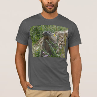 Marmot alpin s'asseyant le T-shirt