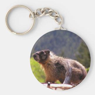 Marmot d'or porte-clé rond
