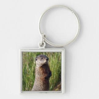 Marmot Keychain Porte-clé