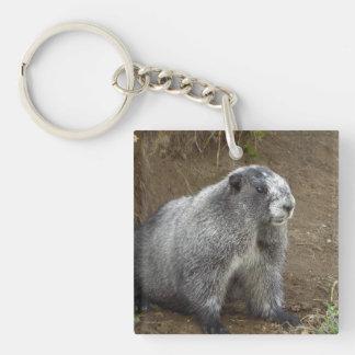 Marmot Porte-clé Carré En Acrylique Double Face