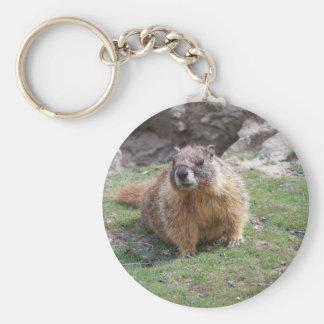 Marmot Porte-clefs