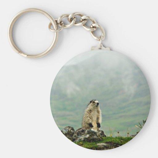 Marmot Porte-clés