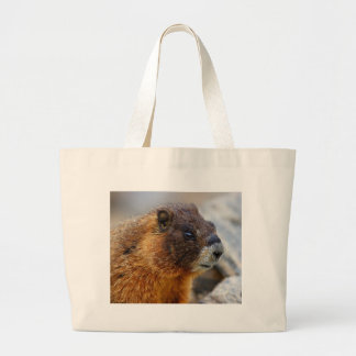 Marmot Sac