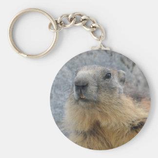 Marmotte alpine de plan rapproché porte-clés