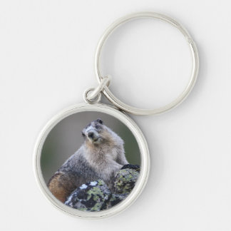 marmotte de l'Alaska Porte-clés