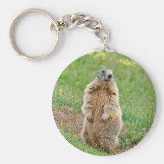 Marmotte de sentinelle porte-clé rond