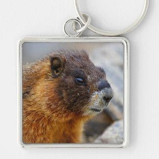 marmotte porte-clé carré argenté