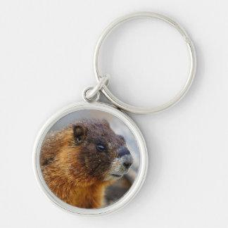 marmotte porte-clé rond argenté