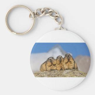Marmottes alpines porte-clé rond