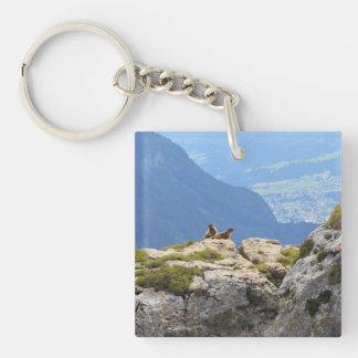Marmottes et vallée de Fassa Porte-clé Carré En Acrylique Une Face