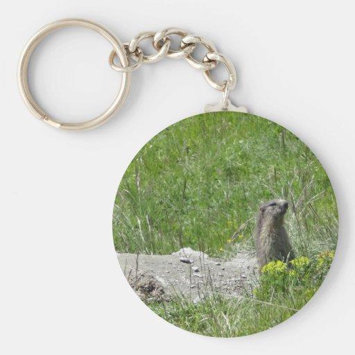 marmottes porte-clés