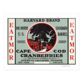 Marque de canneberges de Cape Cod Harvard Eatmor Carte Postale