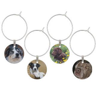 Marque-verres 4 photographies de chien