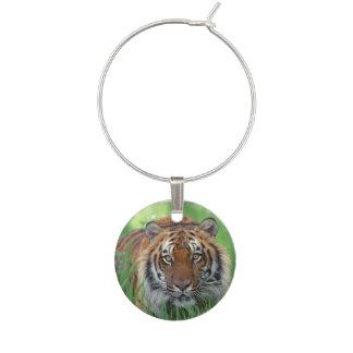 Marque-verres Yeux de tigres