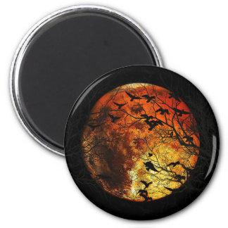 Mars Aimant