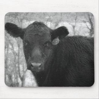 Matin au tapis de souris de ranch