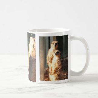 Matin de Meerkat Mug