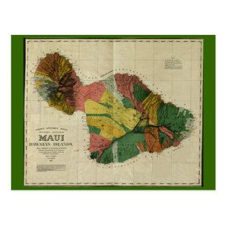 Maui, 1885, carte vintage d'Hawaï Carte Postale