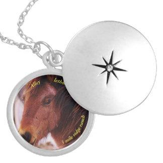 Médaillon Avec Fermoir Argent moyen de photo de cheval plaqué autour du