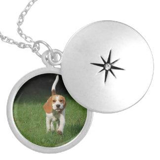 Médaillon Avec Fermoir beagle walking.png