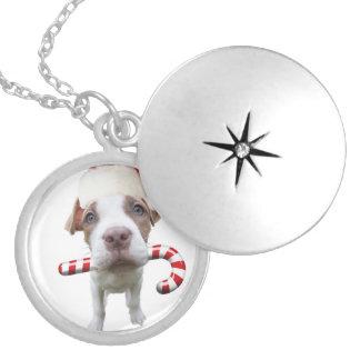 Médaillon Avec Fermoir Pitbull de Noël - pitbull de père Noël - chien de